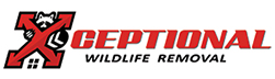 Independence Wildlife Removal